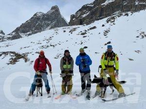 Soccorso in montagna: quattro nuovi cani da valanga